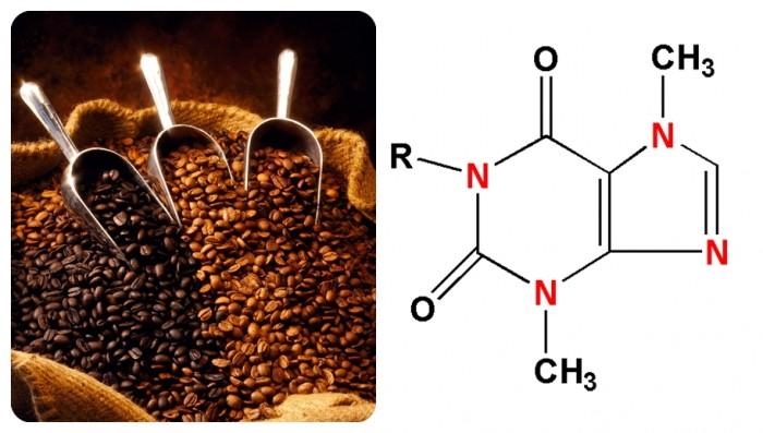 Granos de café y cafeína