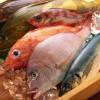 Variedad de pescado