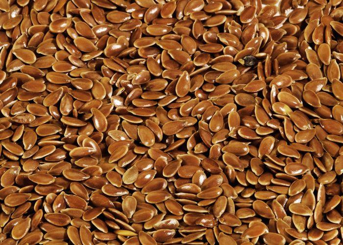 semillas lino