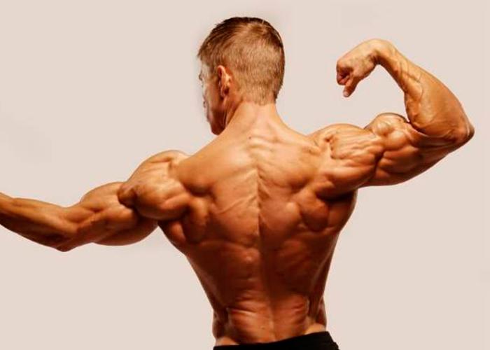hombro-musculoso
