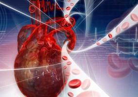Corazón bombeando sangre
