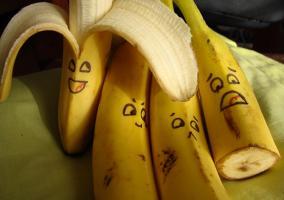 Cuatro plátanos que parecen vivos
