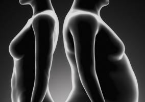 Silueta delgada y obesa