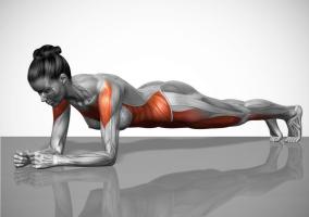 Músculos trabajados en una plancha básica