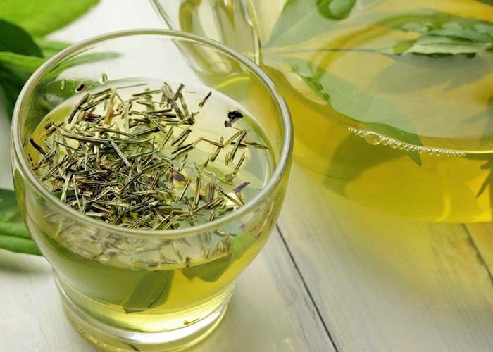 Como me debo tomar el te verde para adelgazar abdomen