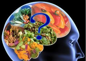 Cerebro siendo alimentado