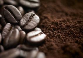 Café molido y en grano