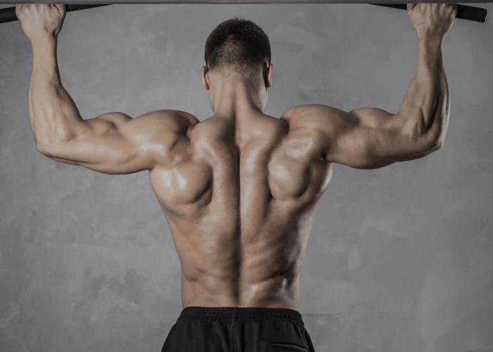 Ejercicios para ensanchar pecho y espalda