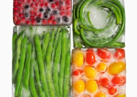 Alimentos nunca congelar