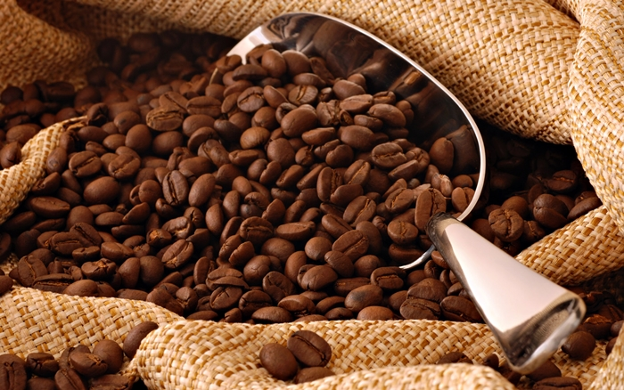 Granos de café