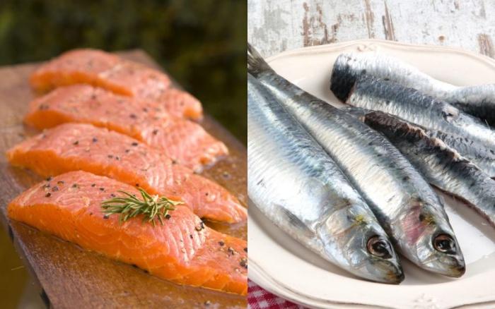 Salmón sardina
