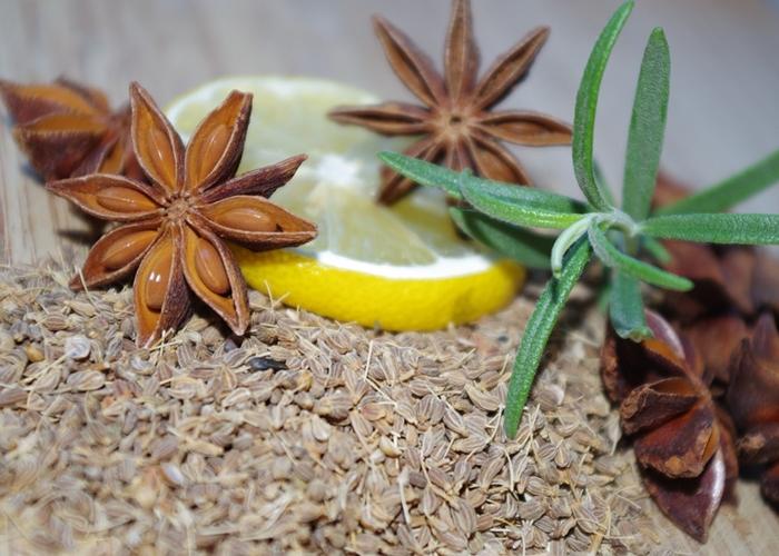 para que sirve la anis verde como planta medicinal