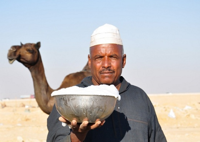 Leche camella propiedades