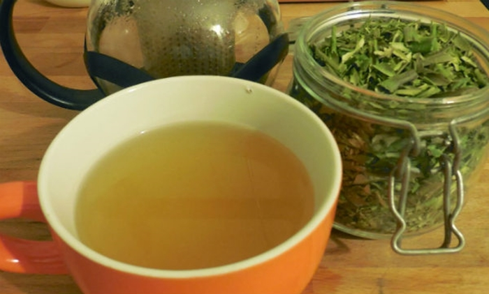 Té con hojas de olivo