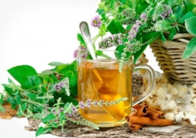 Plantas inhiben apetito