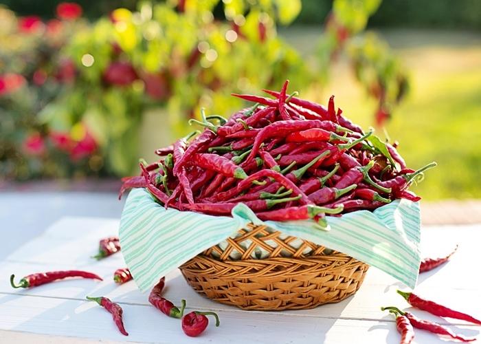 Beneficios y contraindicaciones de las comidas picantes