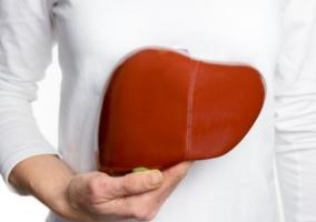 Persona hígado
