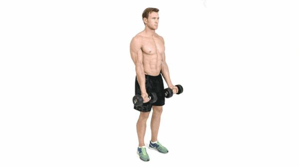 Cómo ganar masa muscular en los brazos
