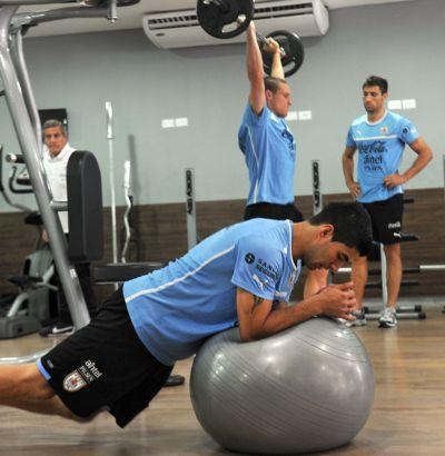 El entrenamiento en el gimnasio complemento ideal para for Entrenamiento gimnasio